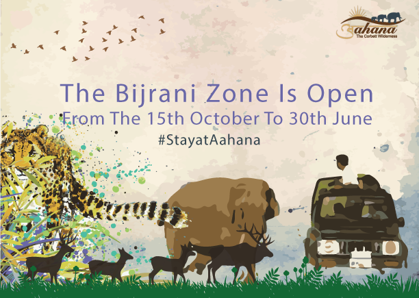 bijrani zone safari timing