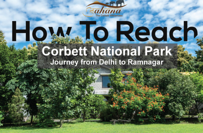 how to reach ramnagar from delhi