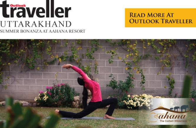 outlook traveller summer bonanza jim corbett